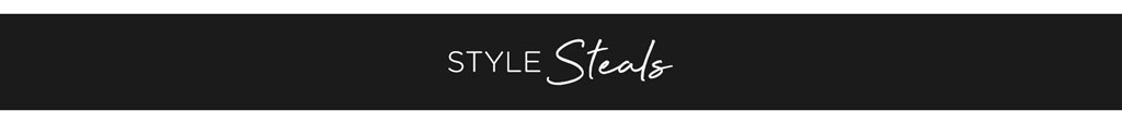 Style Steal